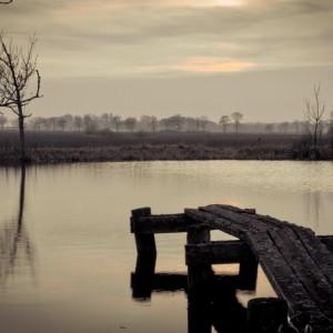 Forgotten_Pier