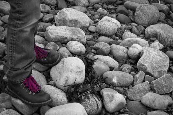 Purple shoelaces