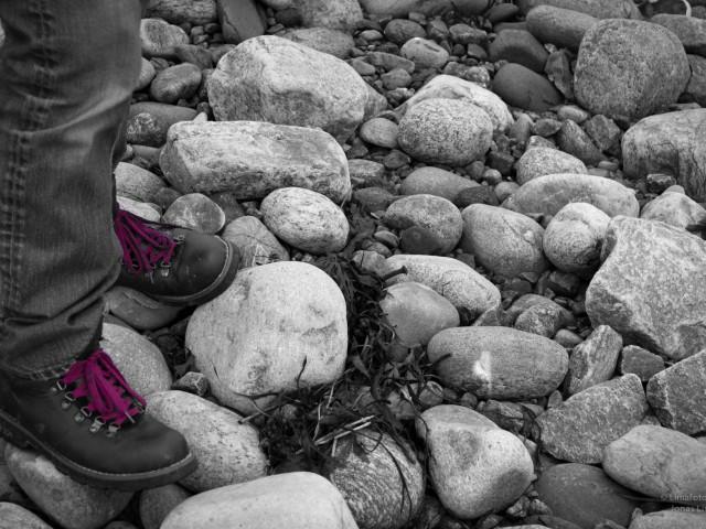 Purple Shoelaces…
