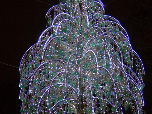 Ljus Träd