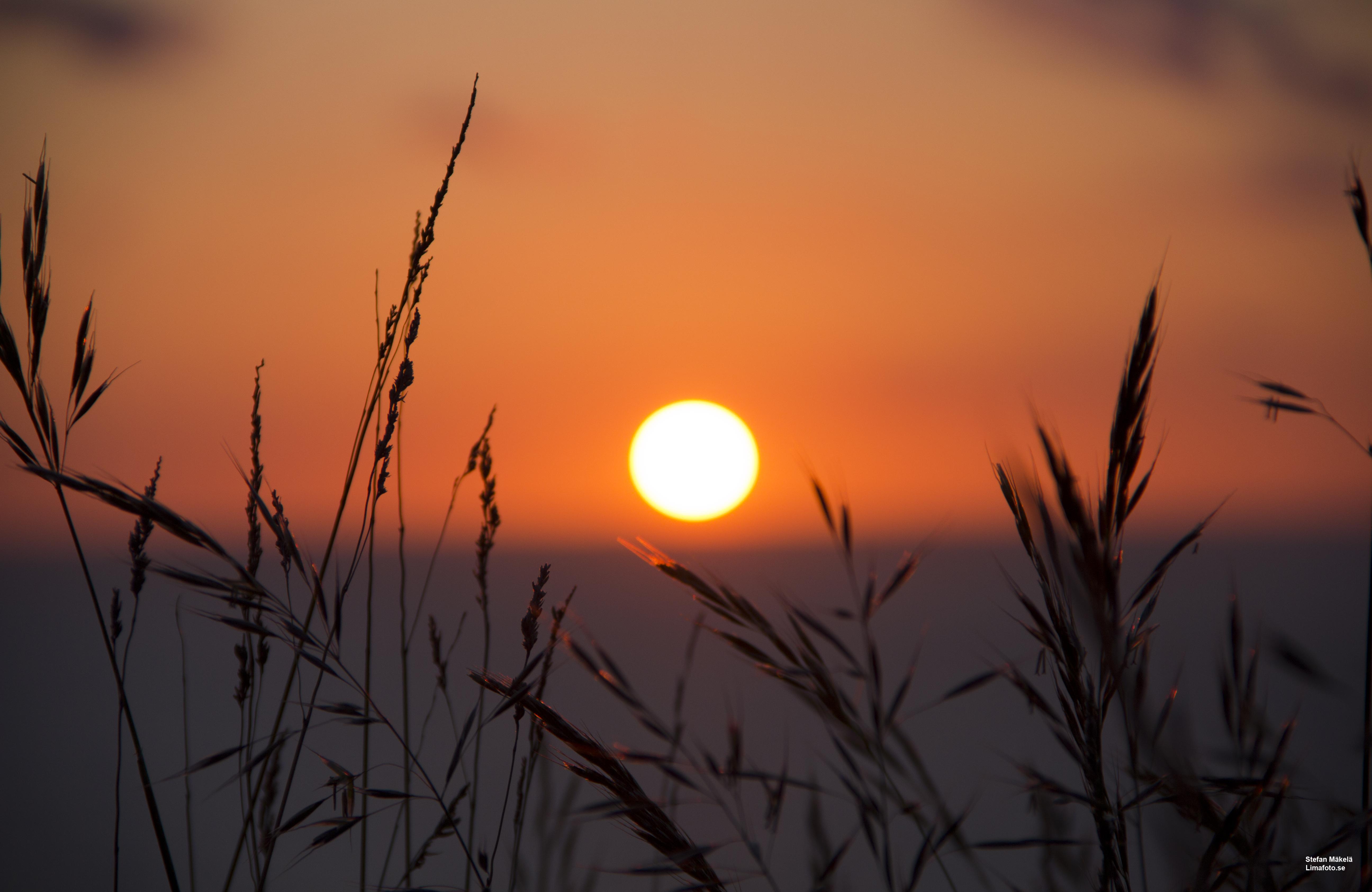 Sunset in Mölle