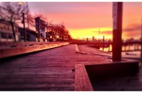 Walk down the pier 11